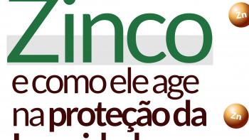 Link permanente para: Zinco